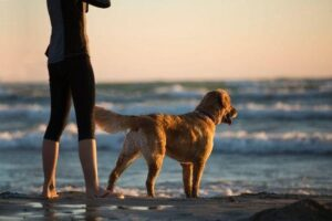 Walking with dog in Beach