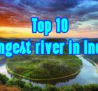 longest rivers in india